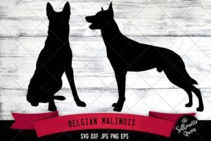 Belgian Malinois SVG Files