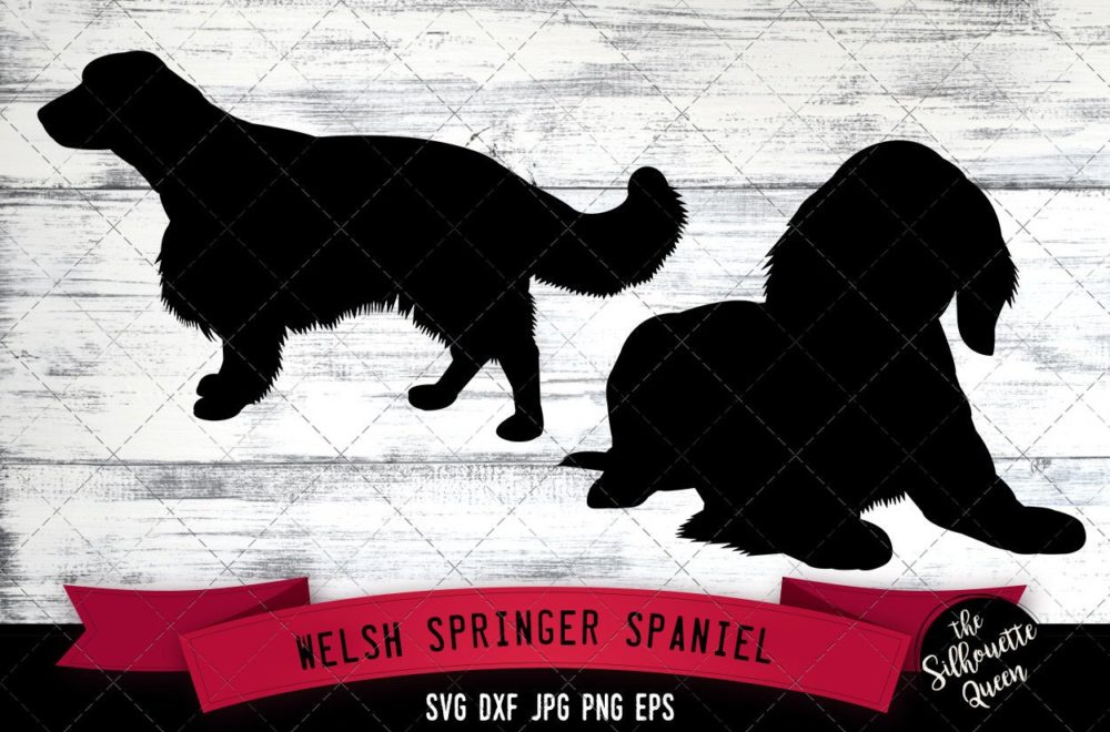 Welsh Springer Spaniel SVG Files