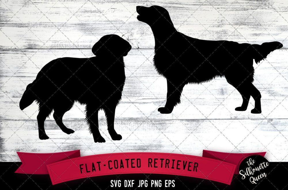 Flat Coated Retriever SVG Files