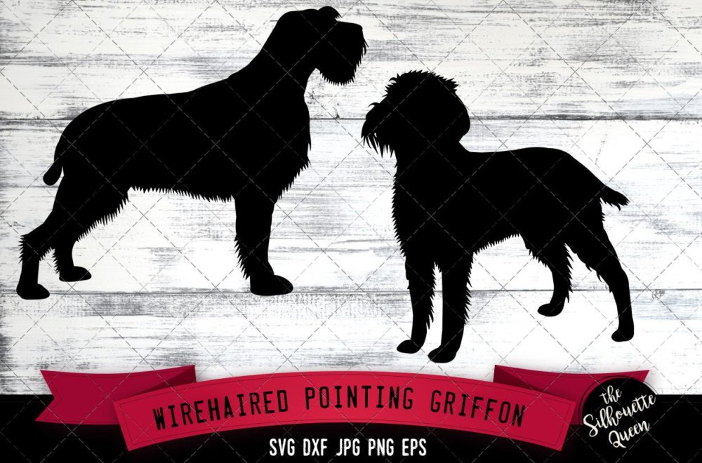 Wirehaired Pointing Griffon SVG Files