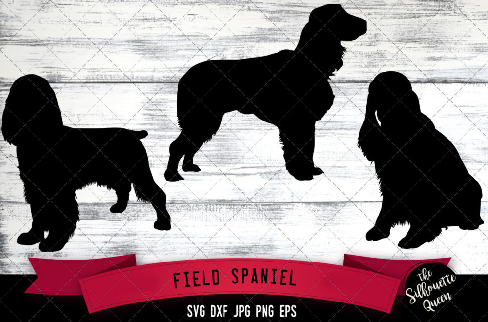 Field Spaniel SVG Files