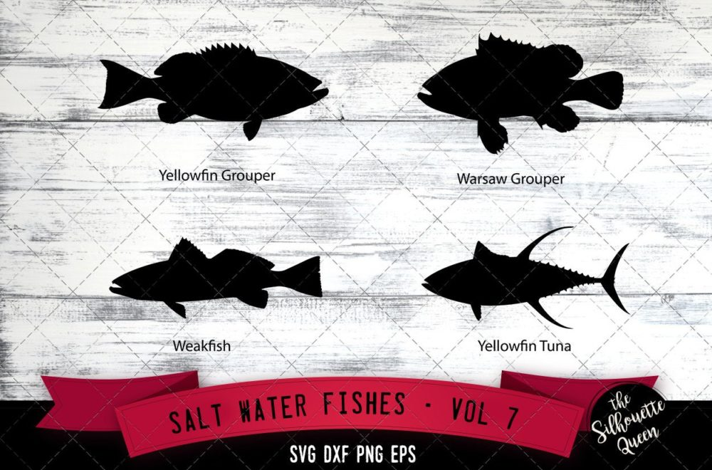 Salt Water Fishes Svg V7 - Yellowfin Grouper