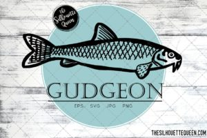 Gudgeon Fish