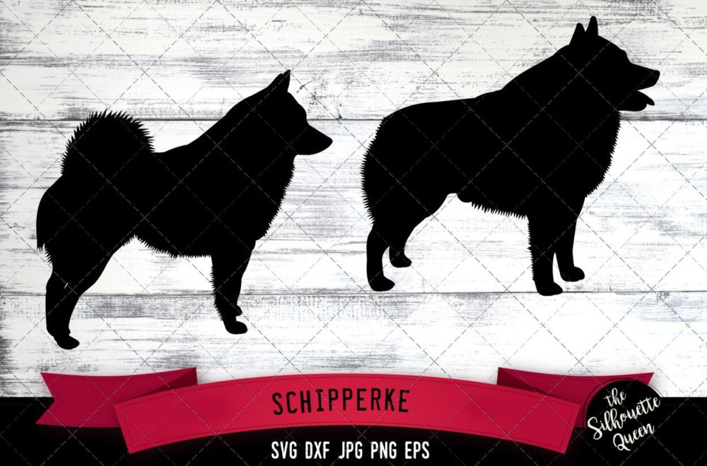 Schipperke SVG Files