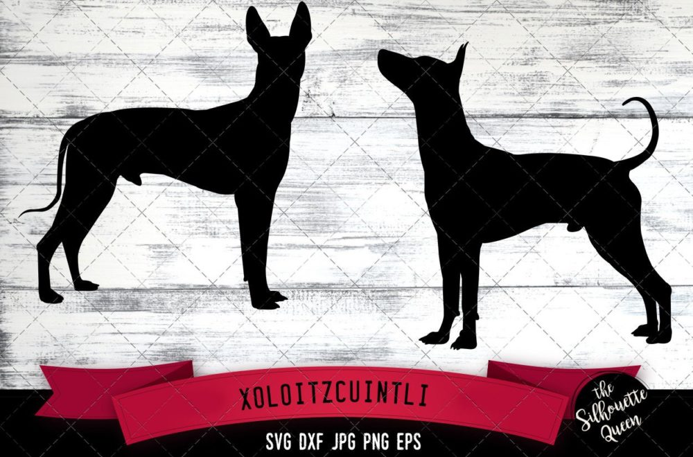 Xoloitzcuintli SVG Files