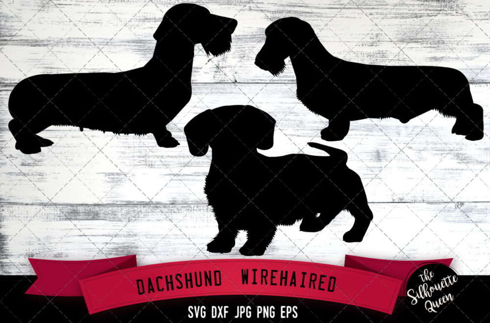 Dachshund Wirehaired  SVG Files