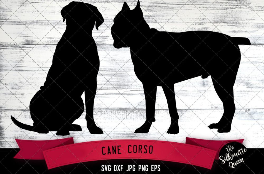 Cane Corso SVG Files