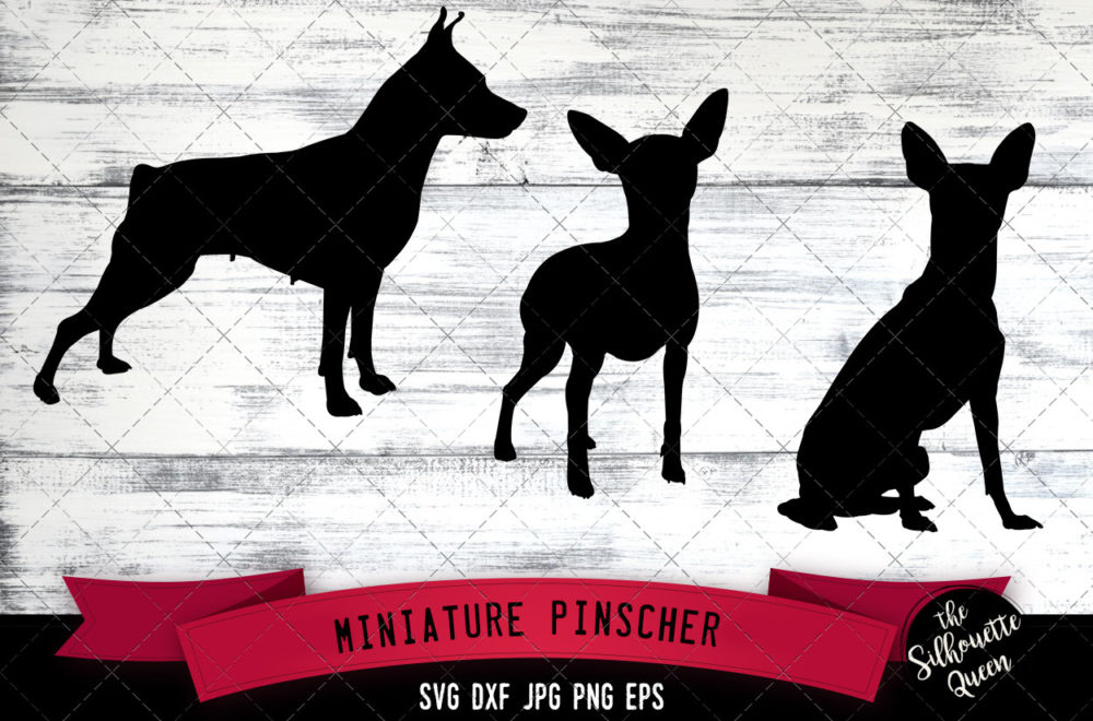 Miniature Pinscher SVG Files