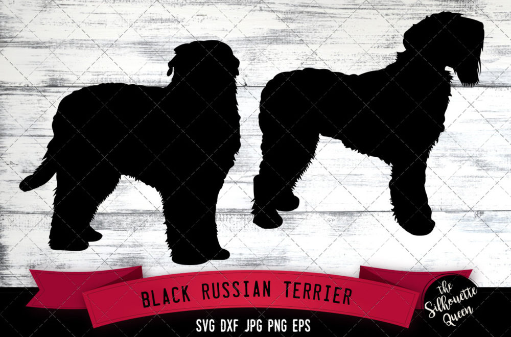 Black Russian Terrier SVG Files