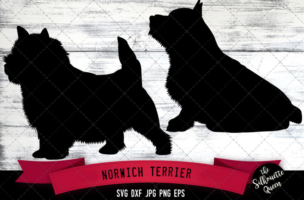 Norwich Terrier SVG Files