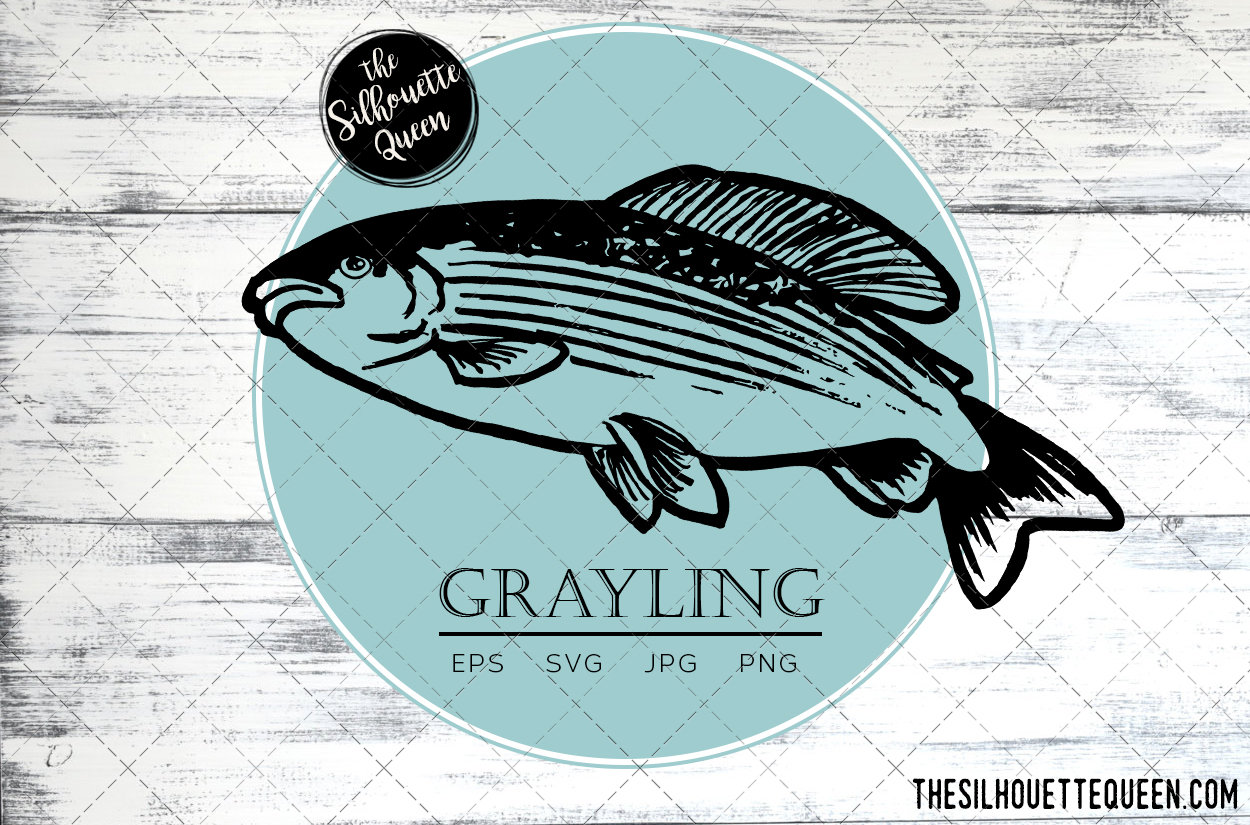 Download Grayling Fish Svg Design Files Hand Drawn Fishing Vector Clipart Cricut Silhouette Cameo Png Eps The Silhouette Queen