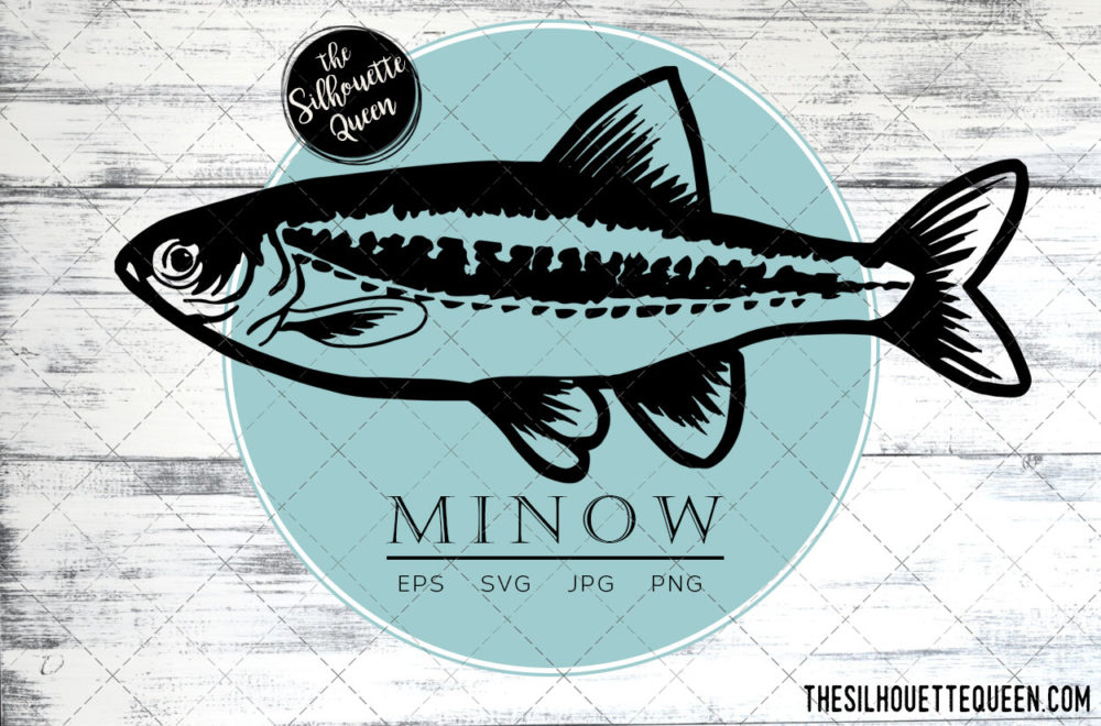 Minnow Fish