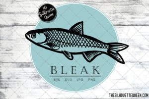 Bleak Fish