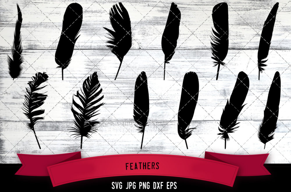 Feathers svg