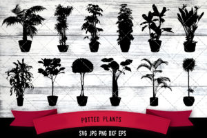 Potted plants svg