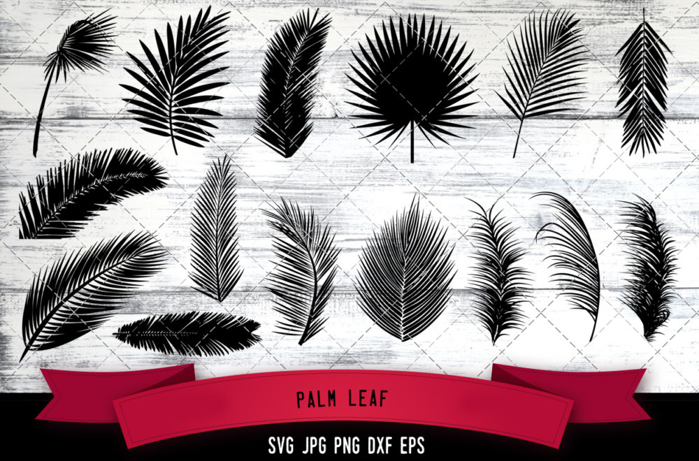 Palm leaf svg
